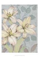 Trois Fleurs I Framed Print