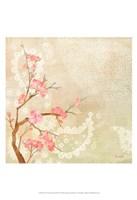 Sweet Cherry Blossoms II Fine Art Print