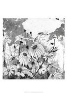 Iza's Garden I Fine Art Print