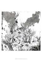 Iza's Garden II Framed Print