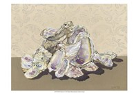 Shell Collection II Fine Art Print