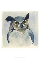 Midnight Aves I Framed Print