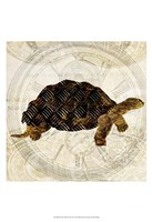 Steam Punk Turtle II Framed Print