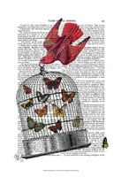 Flying Birdcage Fine Art Print