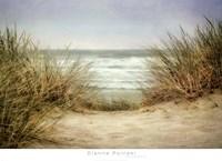 Sea Grasses 1 Fine Art Print