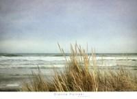 Sea Grasses 2 Fine Art Print