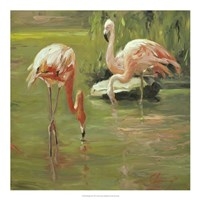 Flamingo II Framed Print