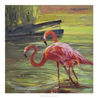 Flamingo III Framed Print