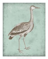 Sepia & Spa Heron I Framed Print