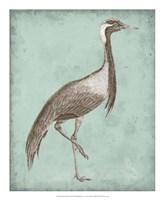 Sepia & Spa Heron III Framed Print