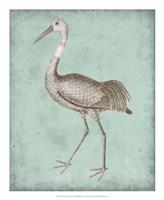 Sepia & Spa Heron IV Framed Print