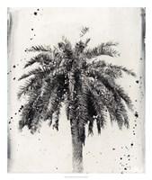 L.A. Dream II Framed Print