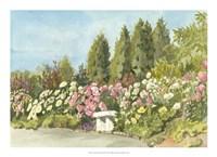 Aquarelle Garden III Fine Art Print