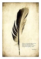 Feather on the Wind III Framed Print