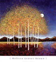 Evening Stream Fine Art Print