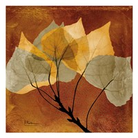 Golden Aspen Fine Art Print