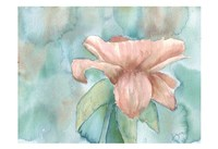 Blush Rose 2 Fine Art Print