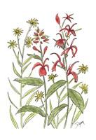 Cardinal Flower Fine Art Print