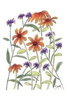 Orange Corn Flower Framed Print