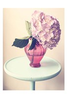 Hydrangea Table Fine Art Print