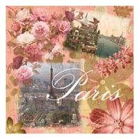Paris Amour Coral Framed Print
