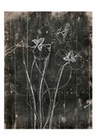 Black Wood Framed Print