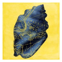 Map Shell Y Indigo Framed Print