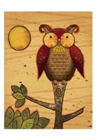 Texture Owls 03 Framed Print