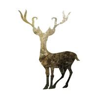 Glimmer Deer 4 Framed Print