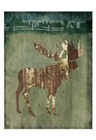 Moose In The Field Framed Print