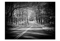 Country Road 1 Fine Art Print