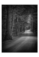 Dark Passage 2 Fine Art Print