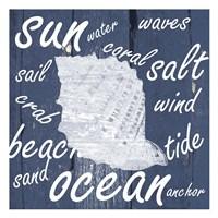 White And Blue Coastal Framed Print