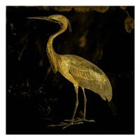 Golden Elegance Fine Art Print