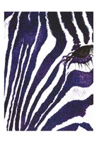 Blue Zebra Mate Fine Art Print