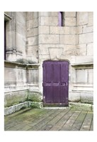 Purple Cluny 1 Fine Art Print