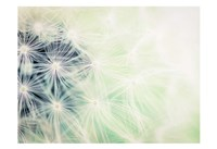 Wishes Mint Fine Art Print