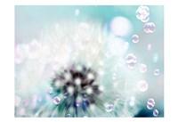Teal Dandelion Framed Print