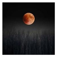 Blood Moon Fine Art Print