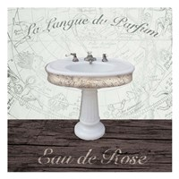 Mapped Bath Sink Fine Art Print