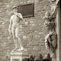 Firenze IV Framed Print