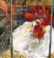Rooster 2 Fine Art Print