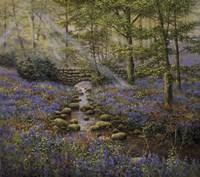 Bluebell Bridge Fine Art Print