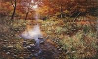 Autumn Gold Fine Art Print
