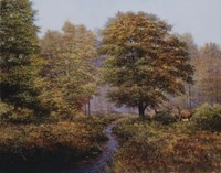 Forest Herd Fine Art Print