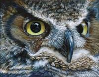 Dark Owl Fine Art Print