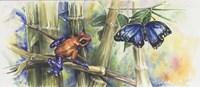 Blue Morpho Fine Art Print