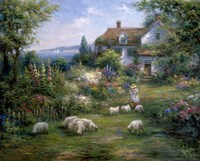 Home Sheep Home Fine Art Print