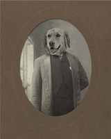 Dog Series #2 Fine Art Print