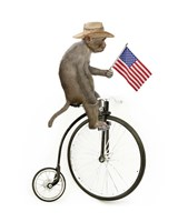Monkeys Riding Bikes #3 Fine Art Print